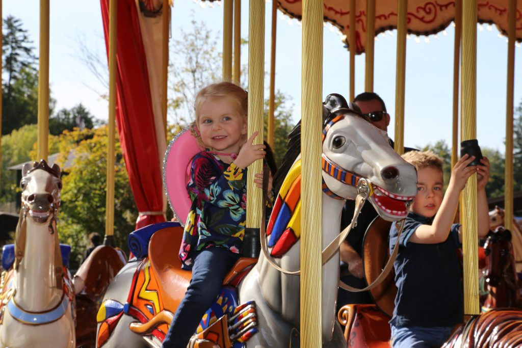 The carousel of wooden horses.