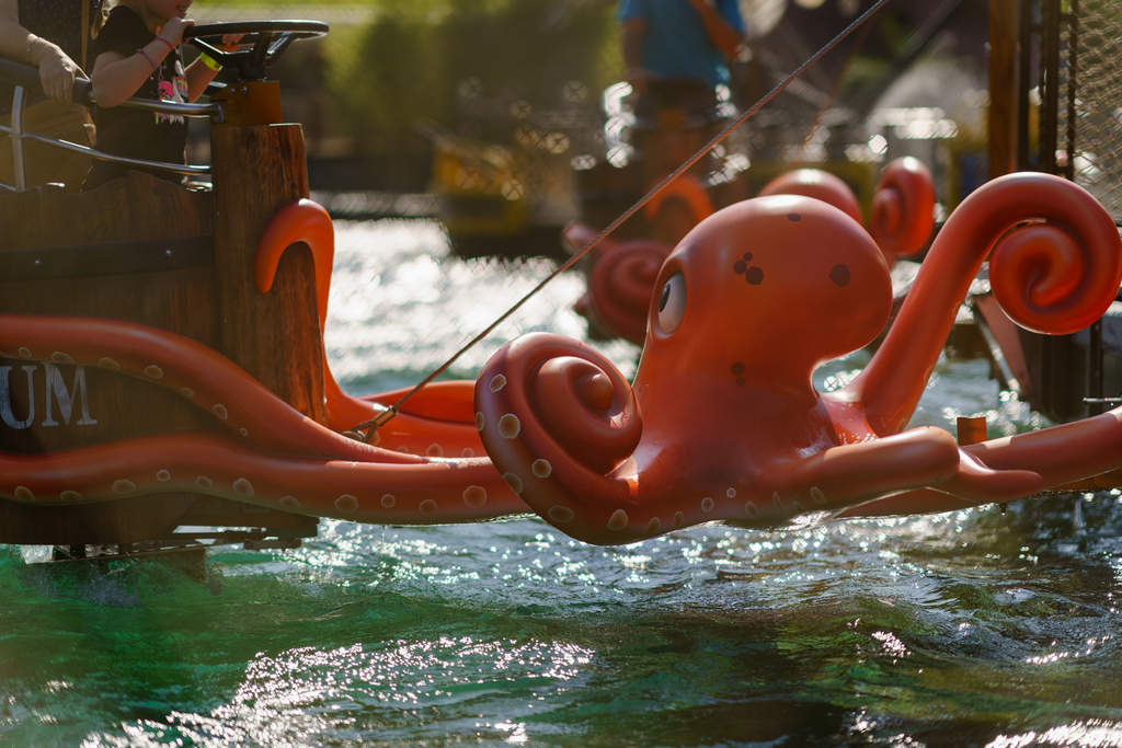 The octopuses are waiting for you to have fun.